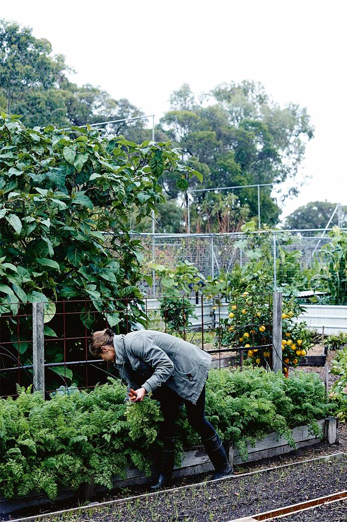 "Lara tends to the [vegetable garden](https://www.homestolove.com.au/how-to-start-a-kid-friendly-vegetable-garden-8298|target=""_blank""), which comprises most of the family's food supply. Jamie says, ""We only buy flour, coffee and a few things from the grocery store!"""