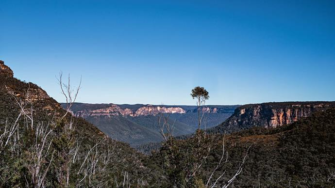 Skip the concrete and convenience of the freeway to instead take a magical journey along Bells Line of Road, an early passage into the NSW Blue Mountains.