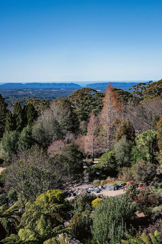 """[**Blue Mountains Botanic Garden**](https://www.bluemountainsbotanicgarden.com.au/ target=""""_blank"""" rel=""""nofollow""""), Mount Tomah.<p> Once a [cut flower farm](https://www.homestolove.com.au/flower-farm-property-victoria-18945 target=""""_blank""""), this mountain site now showcases cool-climate native and exotic plants. It's open daily with plenty of space for barbecues and picnics. There's also a gift shop and restaurant. It's a steep site so if you don't want to walk, take the motorised guided tour."""