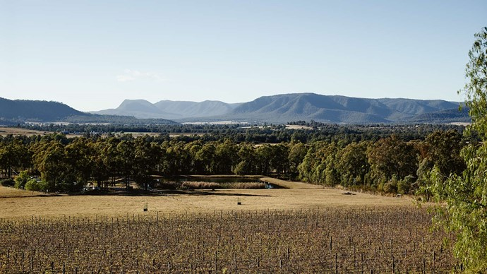 Just 20 minutes' drive from the bustle of NSW's most famous wine destination lies one of its best-kept secrets — the Broke Fordwich region.   | Photo: Mark Roper
