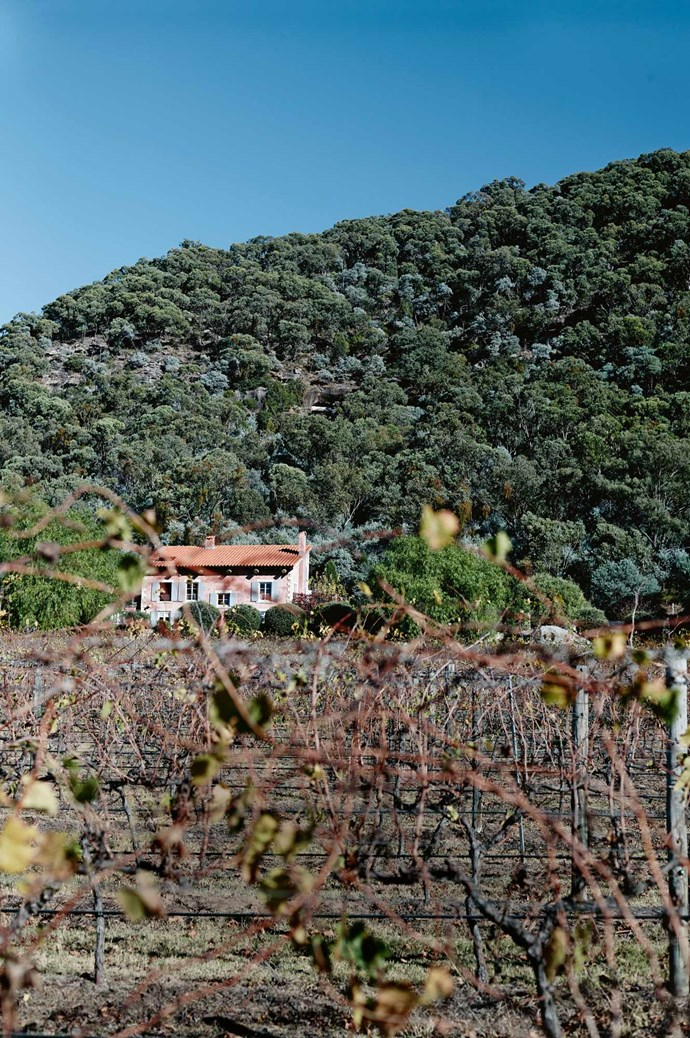 [Talits Estate](https://www.talitsestate.com/). Take in vineyard views from the balcony of this luxurious French provincial-style farmhouse. Bordered by the Yengo National Park, and looking out over three hectares of merlot and shiraz vines, the Provençal-style Talits Estate is a popular accommodation option in Broke Fordwich. | Photo: Mark Roper