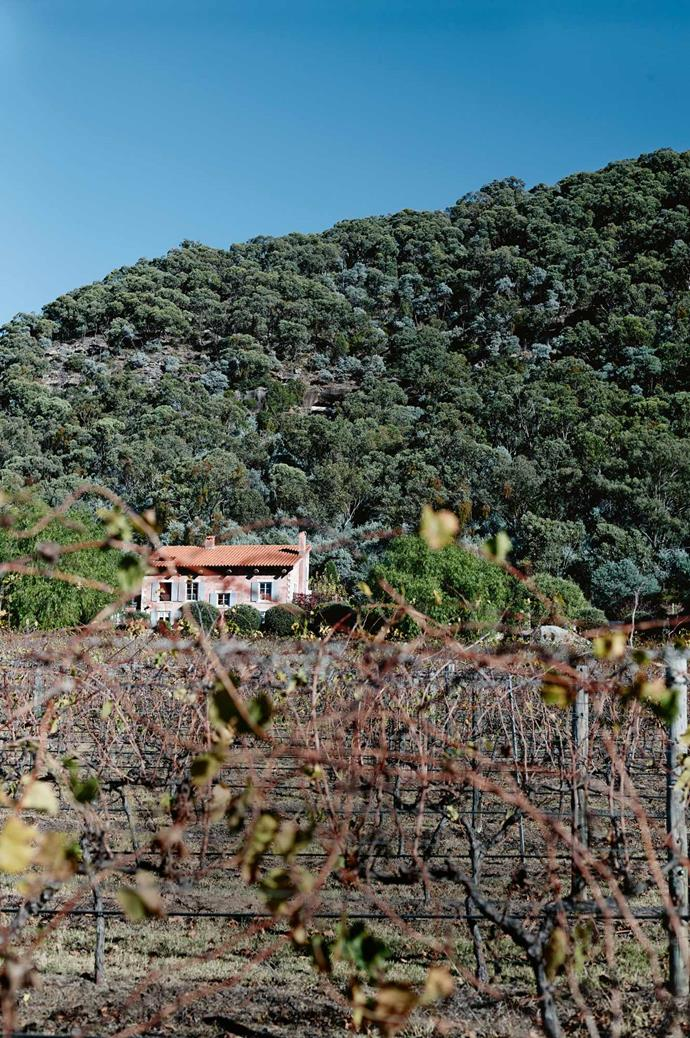 "**Visit: [Talits Estate](https://www.talitsestate.com/|target=""_blank""