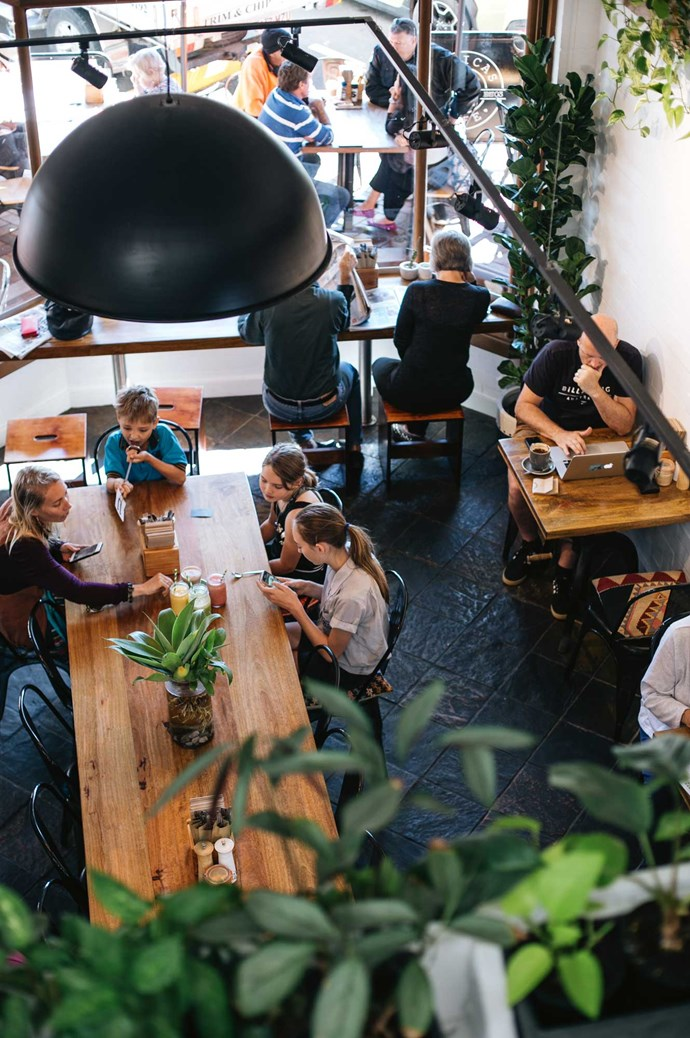 [Monica's Café](https://monicascafe.com.au/). With an all-day breakfast menu and lunch that caters for diners looking for vegan and gluten-free options — as well as plenty of indoor greenery — this Maleny hotspot is the perfect place for a relaxed lunch. | Photo: Abbie Melle