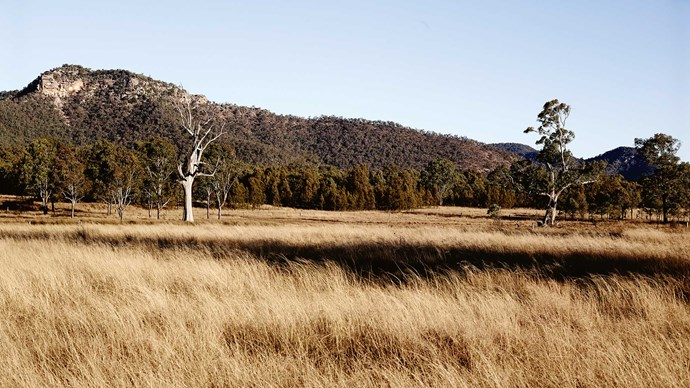 Roughly two-and-a-half hours' drive north-west of Sydney via scenic Tourist Drive 33, [Broke Fordwich](http://www.brokefordwich.com.au/) is situated at the foothills of the Brokenback Ranges. | Photo: Mark Roper