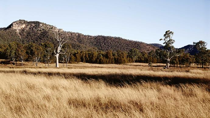 Broke Fordwich is situated at the foothills of the Brokenback Ranges.