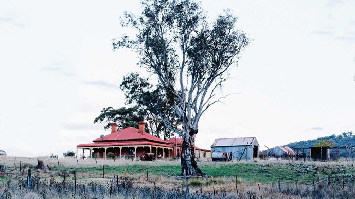 The farmhouse on her family's Clear Creek property in Bathurst.