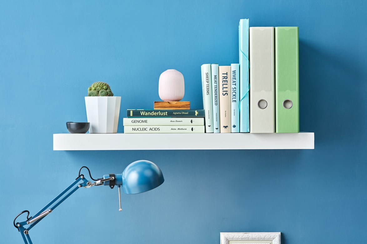 **On the shelf:** To take your bookshelf up a notch why not consider using cactus as bookends?