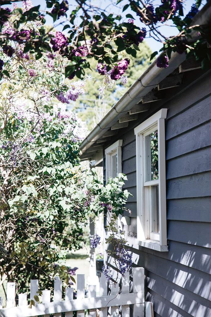 The home's exterior is painted in a custom grey-lilac colour.