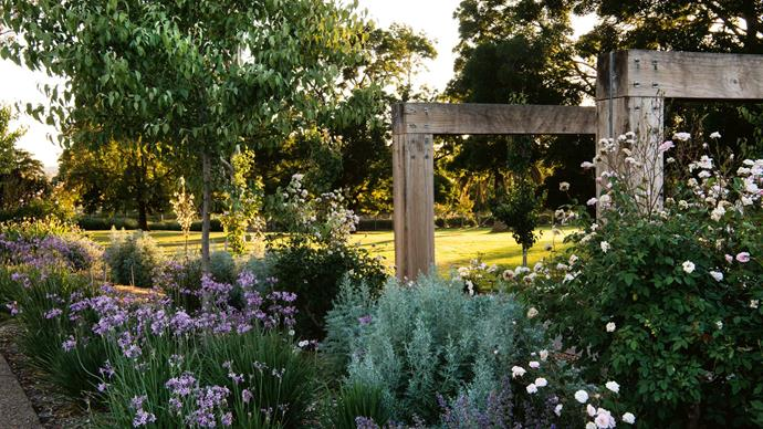 """Initially, the aim was to plant a mostly white garden but, as Adam explains, """"there aren't many [white coloured flowering plants](https://www.homestolove.com.au/plants-with-white-flowers-8696
