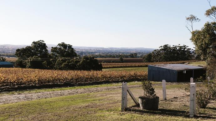 "The view of Barossa Valley from the house. ""I think it's one of the most beautiful places I've ever been,"" says Ilona. For further information, visit the [Otti Made](https://www.ottimade.com.au/