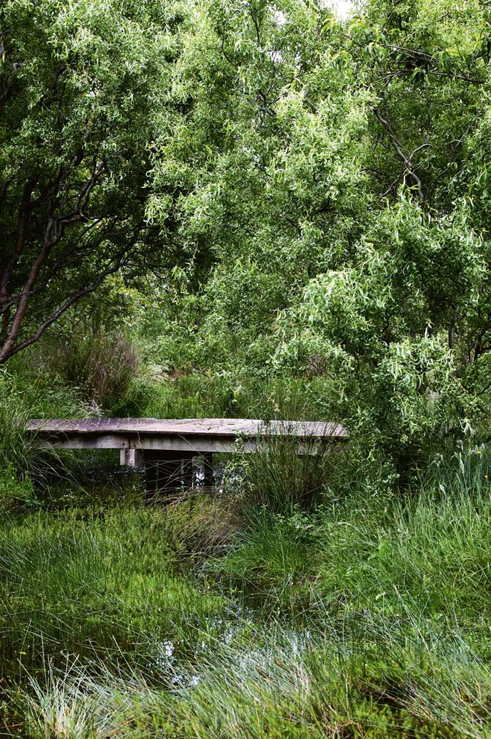 "A small bridge continues the [garden path](https://www.homestolove.com.au/garden-path-design-7156|target=""_blank"") around the outside of the lake, to rolling green agricultural landscape beyond."