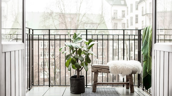 Keep it minimal by pairing some simple furniture with low-maintenance house plants. Can you ever go wrong with Scandi style? Image courtesy of [Fantastic Frank](https://www.fantasticfrank.com/)