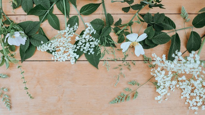 4\. Baby's breath. Known for its delicate tiny flowers, baby's breath weaves innocence, purity and everlasting love into the bridal bouquet. Image courtesy of [Annie Spratt](https://anniespratt.com/)
