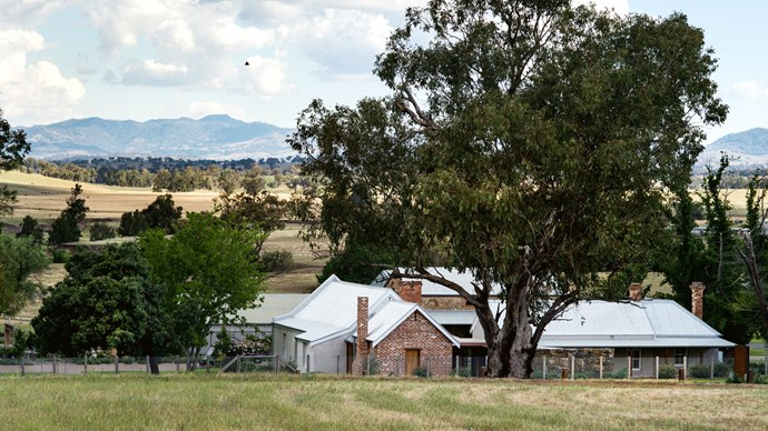 Looking into the village from behidn the chapel, where a grey box eucalyptus tree provides shade.