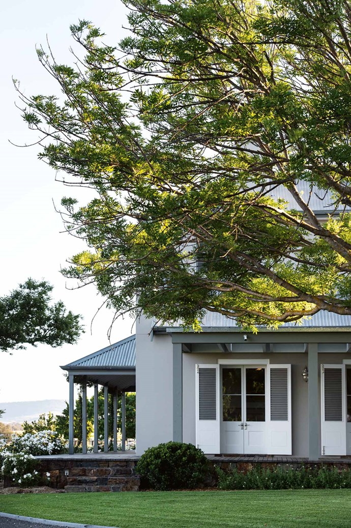 The homestead, shaded by a Fraxinus excelsior 'Aurea'.  | Photo: Brigid Arnott
