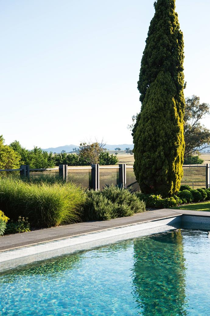 Miscanthus 'Hiawatha', 'Blue Lagoon' rosemary and a tall Cupressus sempervirens 'Swane's Golden' tree grow around the pool.
