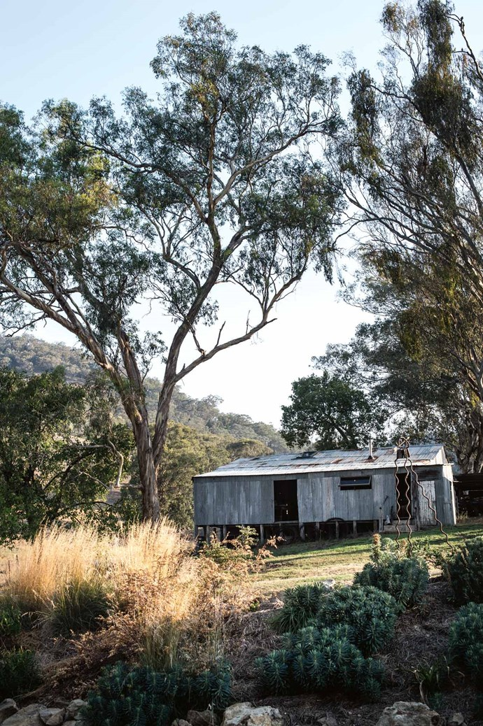 "The woolshed where Tamara does her weaving. Focusing on the renovation had helped her get through a bout of breast cancer in 2014. ""At one point I was in the 40-degree heat, paving in front of the woolshed with my children and thinking there's nothing much closer to heaven. We were having such fun and forevermore they will think: we built that."""