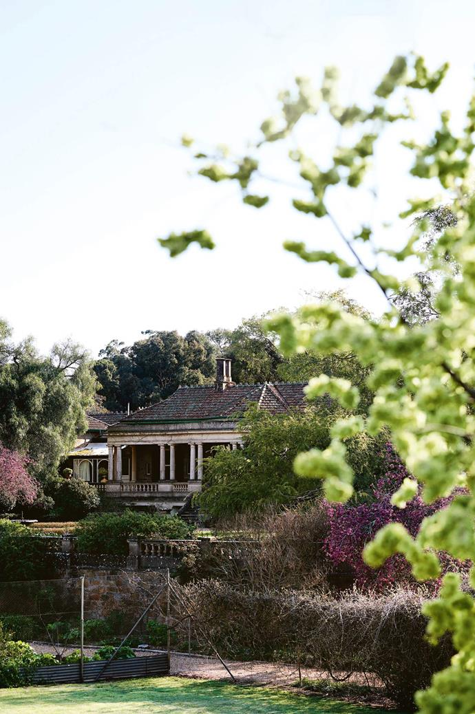 The 200-hectare property includes a homestead that sits in extensive gardens that were once tended to by 14 gardeners. The state's oldest merino stud was settled in 1839 by Frederick Dutton with 5000 merinos driven overland from NSW.