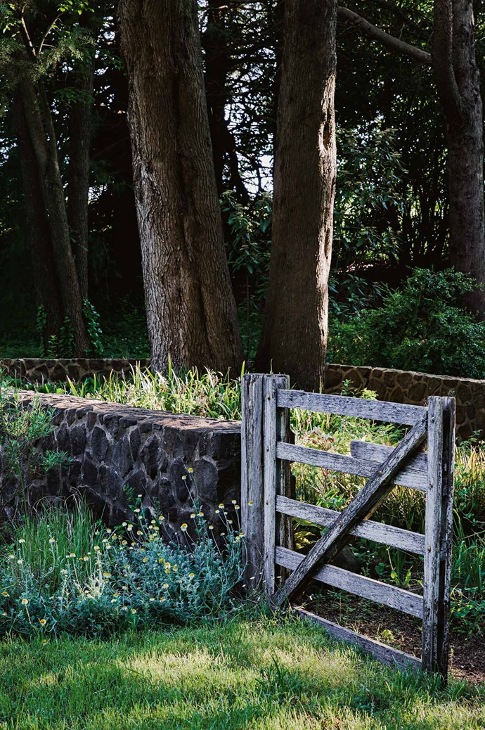 "Rustic timber gates are also an Edna Walling signature touch. Andrew muses, ""When I am mowing or working in the garden I regularly stop and wonder if Edna Walling knew how her planting scheme would look with mature trees that have a life and form all of their own."""