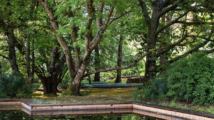 "The [swimming pool](https://www.homestolove.com.au/putting-in-a-swimming-pool-19152|target=""_blank"") is shaded by mature trees. In summer, watering is priority. ""One of our contributions to the garden will be water security to make sure we can sustain the plantings of deciduous and cool-climate plants into the future,"" says Andrew."