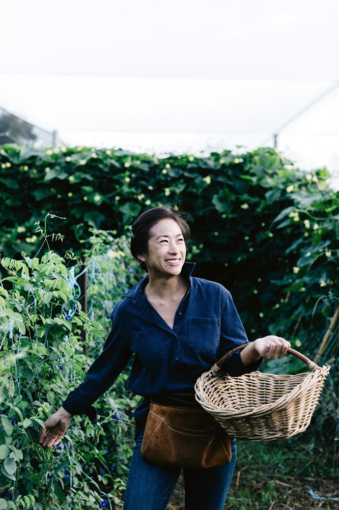 """""""Very few people grow Asian ingredients at this scale, and no-one I know does it organically,"""" notes Palisa.  