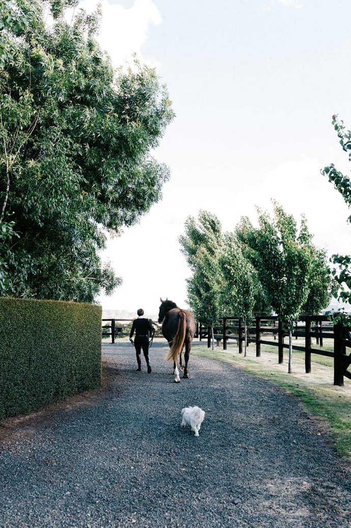 "Meghan strolls the grounds with one of her warmbloods, Harry, while one of her pups follows behind. ""I used to look at stables and horse properties in books, and think, 'One day...'""  