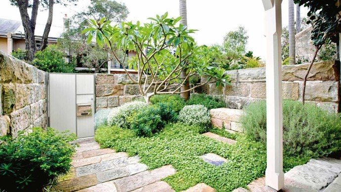 Clever planting and positioning can create a high-impact yet low-maintenance garden as seen in this coastal oasis. *Photo:* Michael Wee