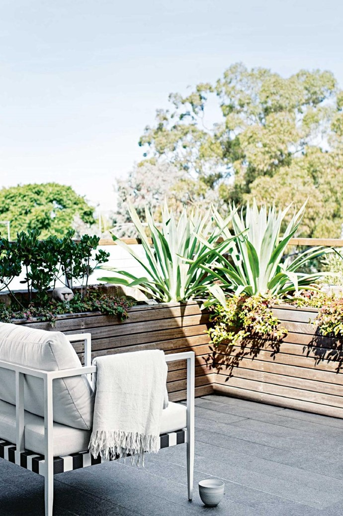 """These planter boxes offer privacy and ample space to create a low-maintenance [balcony garden](https://www.homestolove.com.au/the-ultimate-balcony-garden-2513 target=""""_blank""""). *Photo:* Felix Forest   *Styling:* Claire Delmar"""