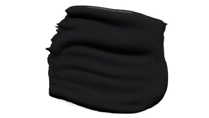 Clean & Protect' low sheen interior paint in Black Ace, $61.60/4L, [British Paints](http://britishpaints.com.au)