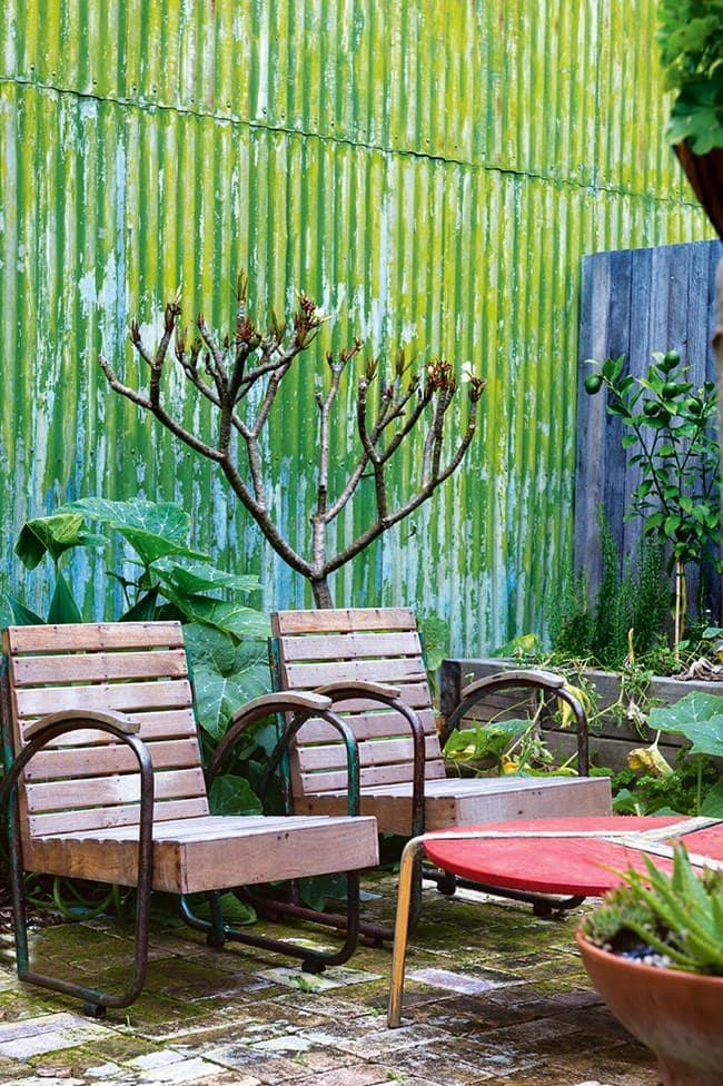 Sculptural plants add interest and take up less room in a small space garden. Photographer: Brigid Arnott