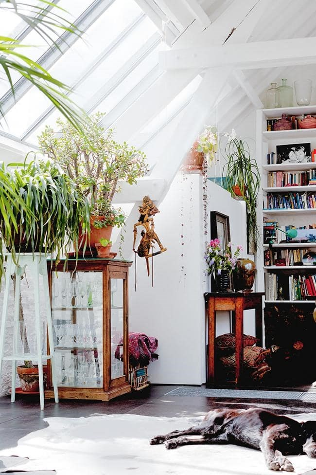 Plants need a lot of light, and the best possible position for them is in front of a window. If this isn't an option in your home, the next best thing is placing your potted plant as near to sunlight as possible. Here, plants are placed up high near a skylight to receive full sun. Just be careful of them being sunburnt when placed near glass Photographer Bart Kiggen for Coffeklatch
