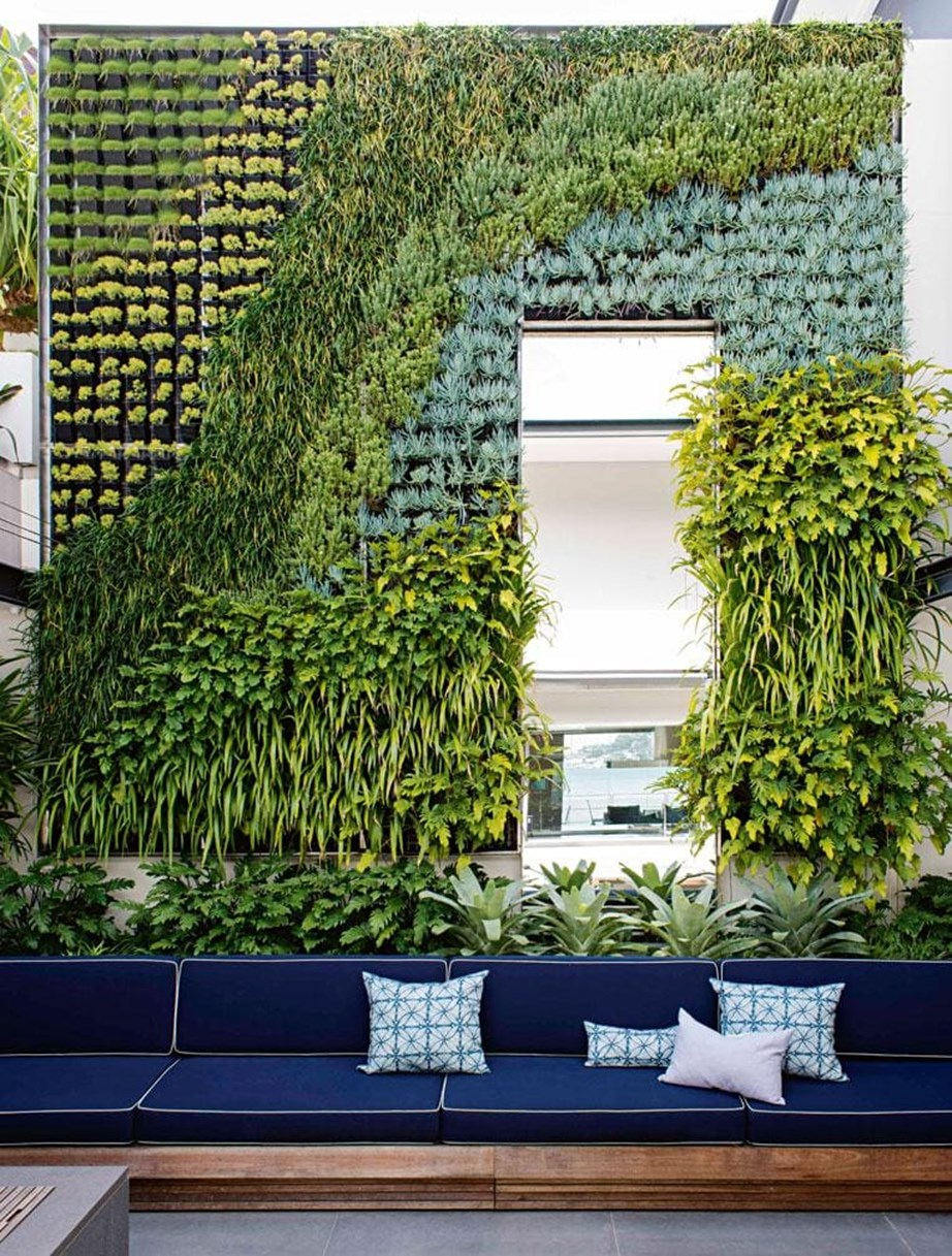 """Up the top of this green wall, we chose plants that are more sun tolerant, whereas the ones down the bottom are more protected,"" says landscape designer Matt Cantwell, who created this stunning external green wall. *Photo:* Nicholas Watt"
