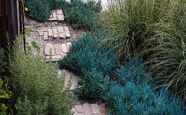 20 best urban garden designs