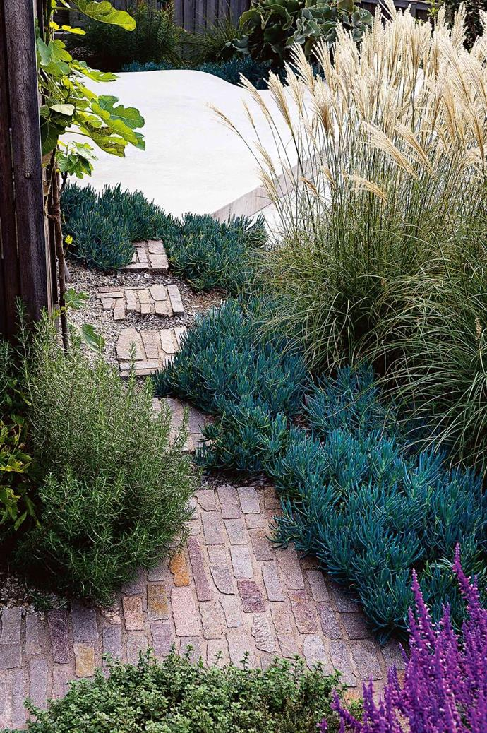 A pathway of steppers is a relaxed treatment where a solid path isn't necessary. These are mini pieces of the main paved area, formed in situ repeating the 'Filetti' stone paving. Photographer: Brigid Arnott