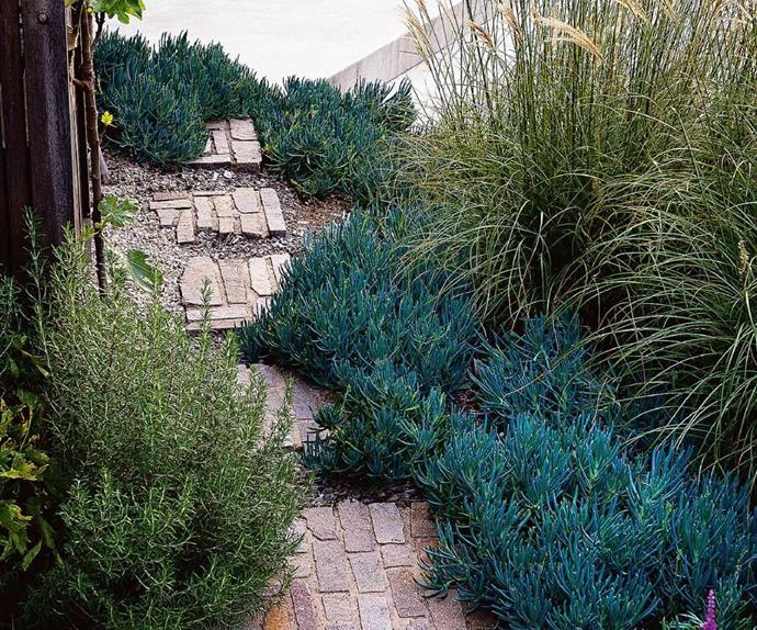 courtyard-garden-bricks-mar15