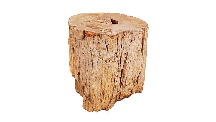 Petrified wood stool, $1795, [Weylandts](https://www.weylandts.co.za/).