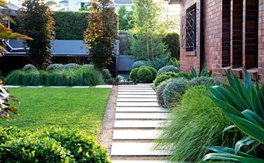 ask an expert: winter garden maintenance for spring
