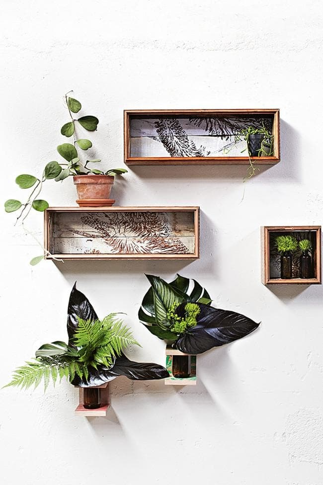 Freshen up your wall display with a cluster of cut foliage. Sculptural leaves are perfect for areas that are too dark for plants. Mix and match shape, texture and colour. For extra botanical appeal, try these shadow boxes and vases from [Bonnie And Neil](http://www.bonnieandneil.com.au/) Photographer: Armelle Habib