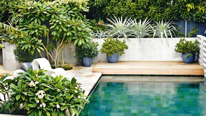 "Make a statement when it comes to your tile selection and pattern, like this patchwork of similar hues. ""Your pool can be part of a concept for your entire garden,"" says Peter Fudge of [Peter Fudge Gardens](http://www.peterfudgegardens.com.au/). If you'd like to see a reflection of the surrounding garden, choose black or gunmetal grey tiles, or opt for jade and green hues for that holiday feel.  Get this look with a three-colour combination Photographer: Michael Wee"