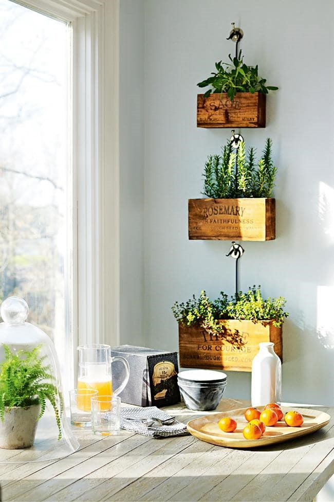Get your herbs out of the garden and onto the wall. Here, vertical planters save on valuable bench space and add a touch of rustic beauty to the kitchen Photographer: Lucas Allen