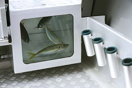 Surtees Workmate livebait tank