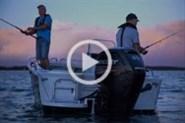 Mercury fourstroke outboard video