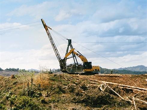 Forestry _excavator