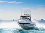Trailerboat reviews