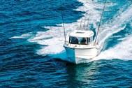 Arvor 605 Sportsfish