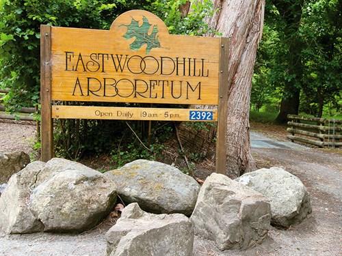 Eastwoodhill _11