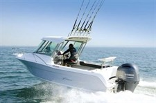 New Cruise Craft boat
