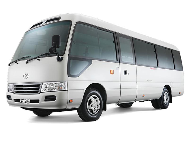 Whitebus800