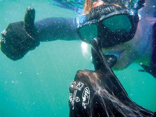 Calypso charter shark diver