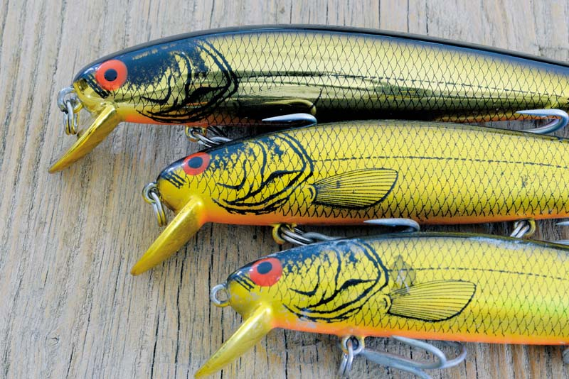 Hard bodied lures